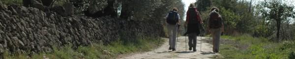 trek persone in cammino