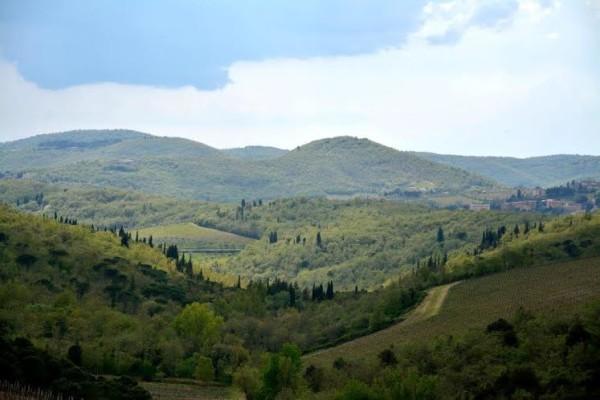 Panorama Chianti