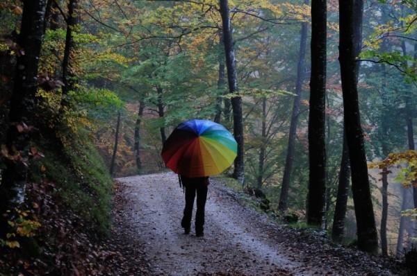 Ombrello colorato sotto la pioggia
