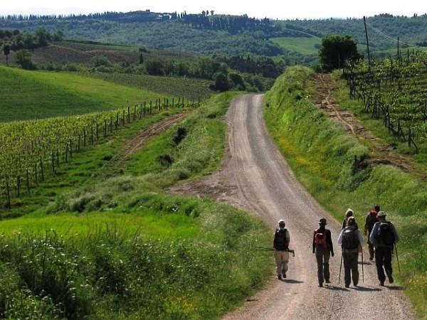 Trek Campagne toscane