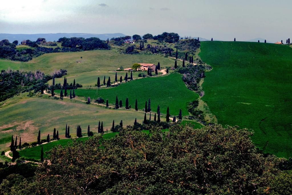 Pietraporciana cipressi Valdorcia